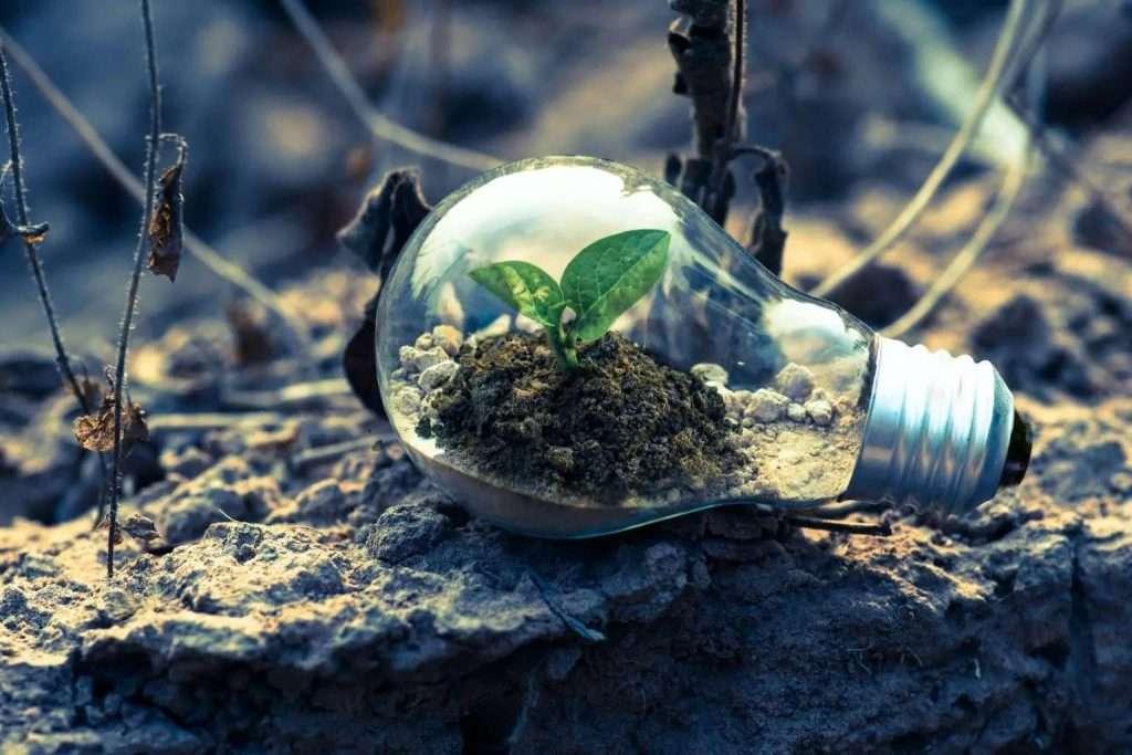 Earth Day: 10 consigli per un ufficio ecologico