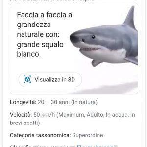 animali-3d-di-google-squalo-opbwtmuwg1cmm512zalc93mh9hqx62proqn1jrqaig